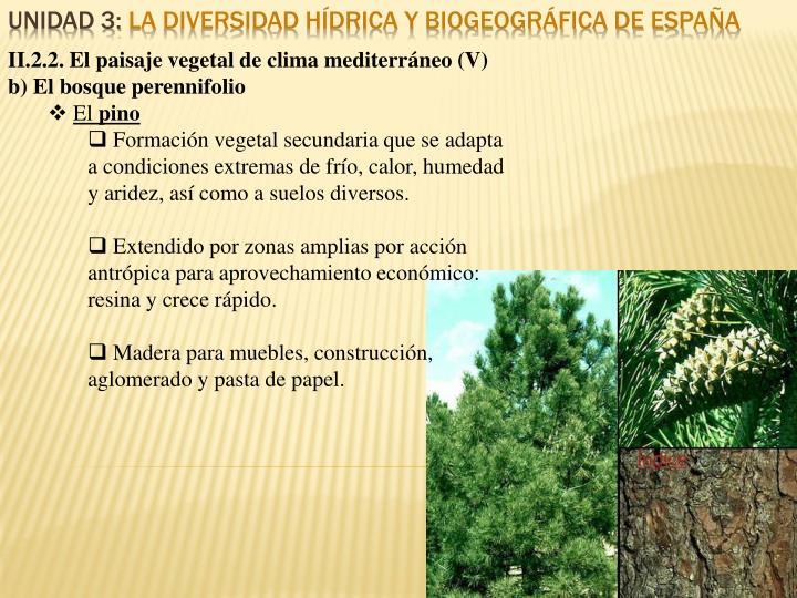 II.2.2. El paisaje vegetal de clima mediterráneo (V)