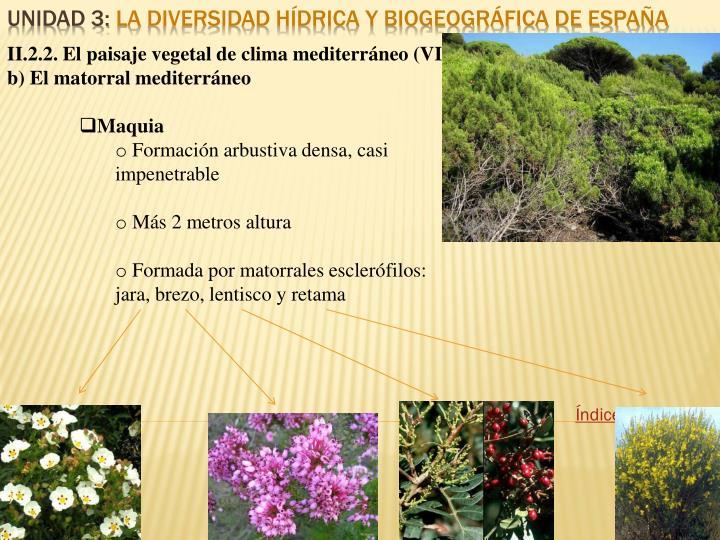 II.2.2. El paisaje vegetal de clima mediterráneo (VII)