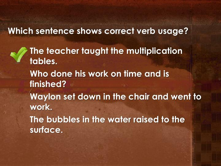 Which sentence shows correct verb usage?