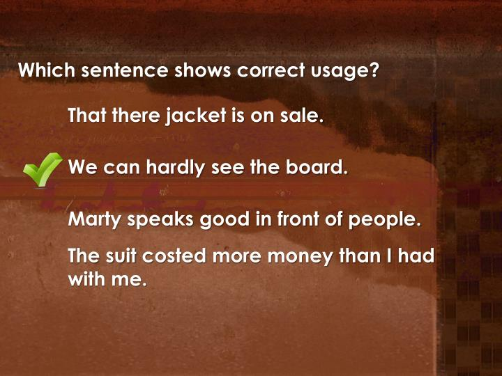 Which sentence shows correct