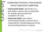 leadership functions instrumental versus expressive leadership