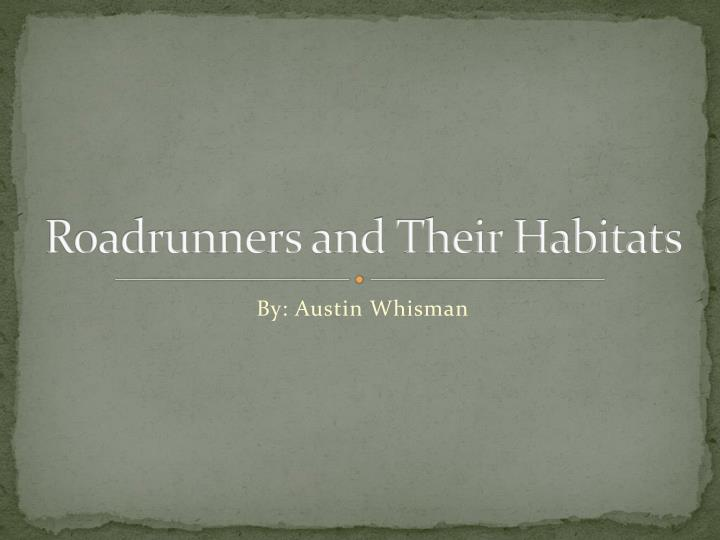 roadrunners and their habitats n.