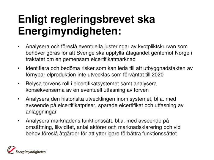Enligt regleringsbrevet ska energimyndigheten