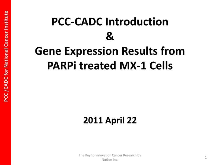 pcc cadc introduction gene expression results from parpi treated mx 1 cells n.
