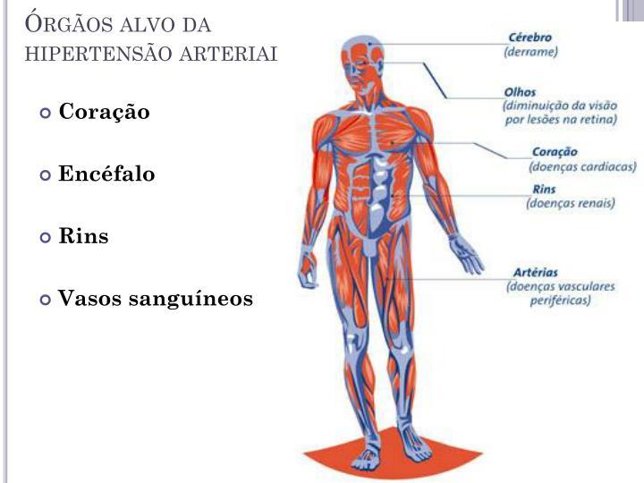 Órgãos alvo da