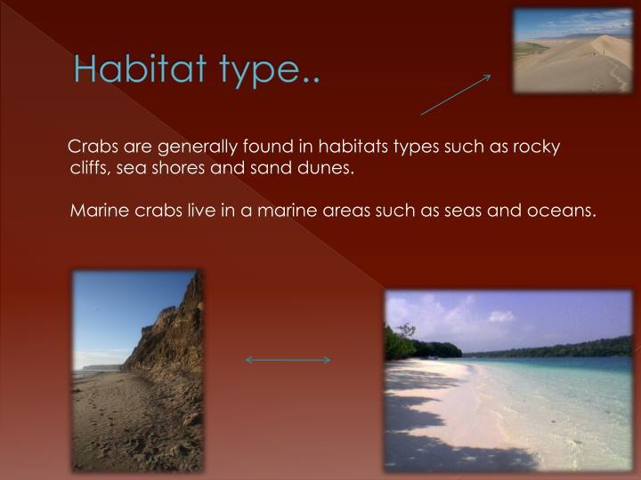 Habitat type..