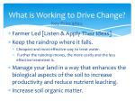 what is working to drive change key principles