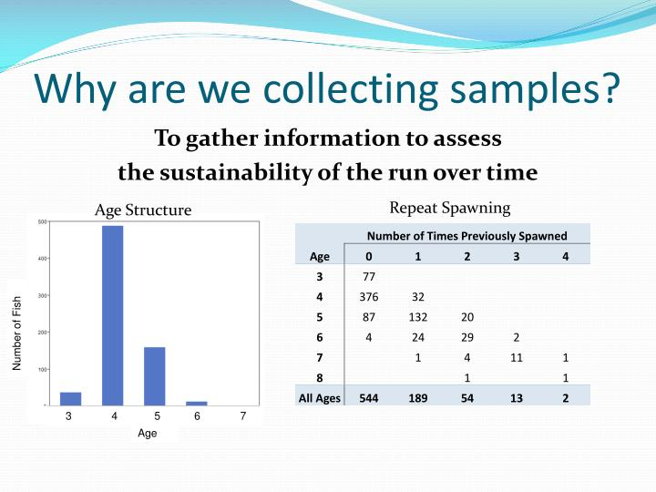 Why are we collecting samples?
