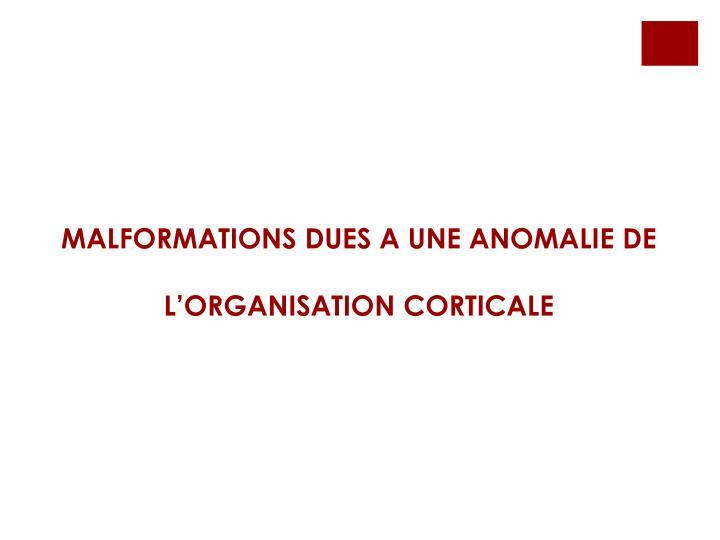 MALFORMATIONS DUES A UNE ANOMALIE DE L'ORGANISATION CORTICALE