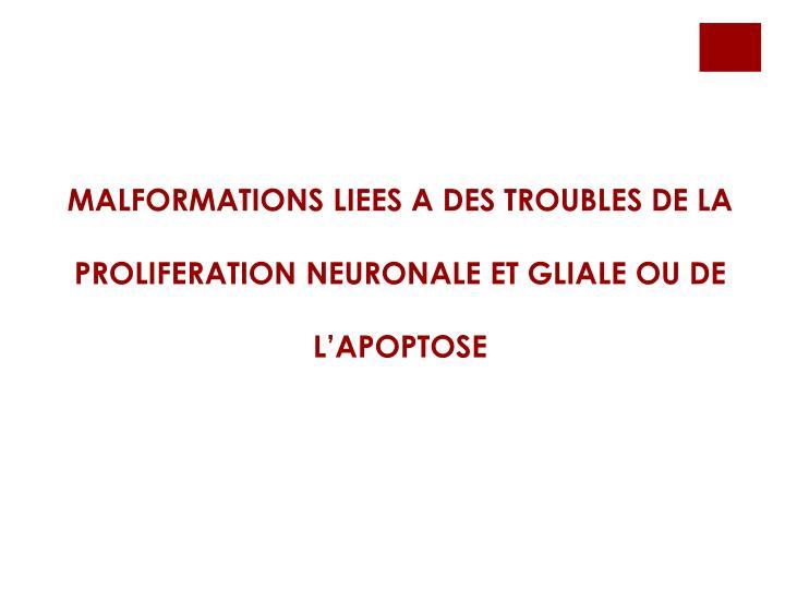 MALFORMATIONS LIEES A DES TROUBLES DE LA PROLIFERATION NEURONALE ET GLIALE OU DE L'APOPTOSE