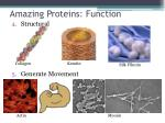 amazing proteins function1