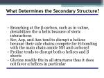what determines the secondary structure1