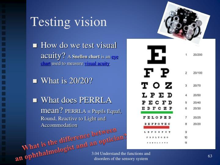 Testing vision
