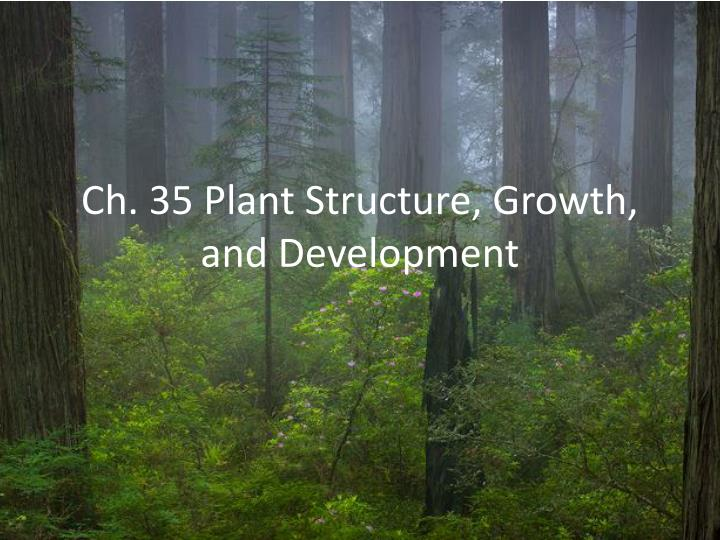 ch 35 plant structure growth and development n.