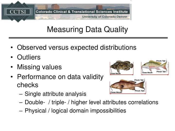 Measuring Data Quality