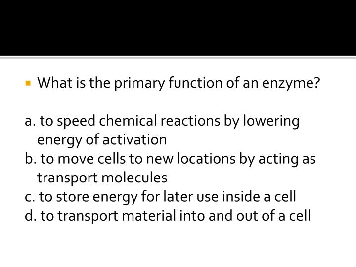 What is the primary function of an enzyme