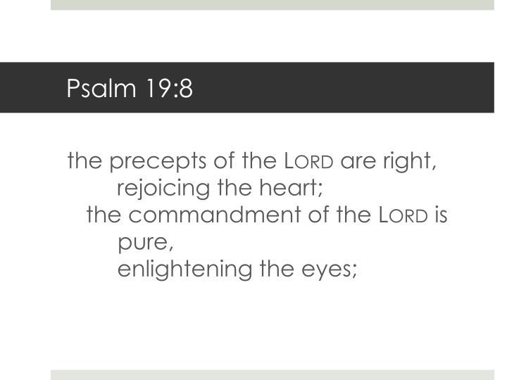 Psalm 19:8