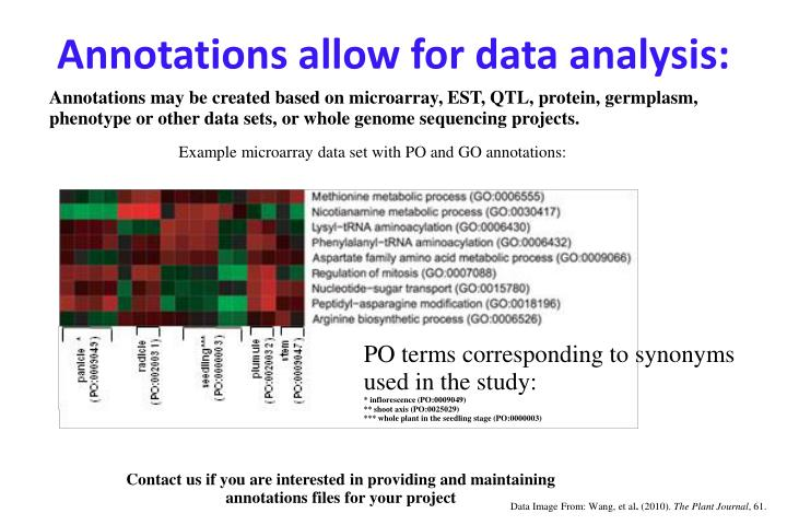 Annotations allow for data analysis: