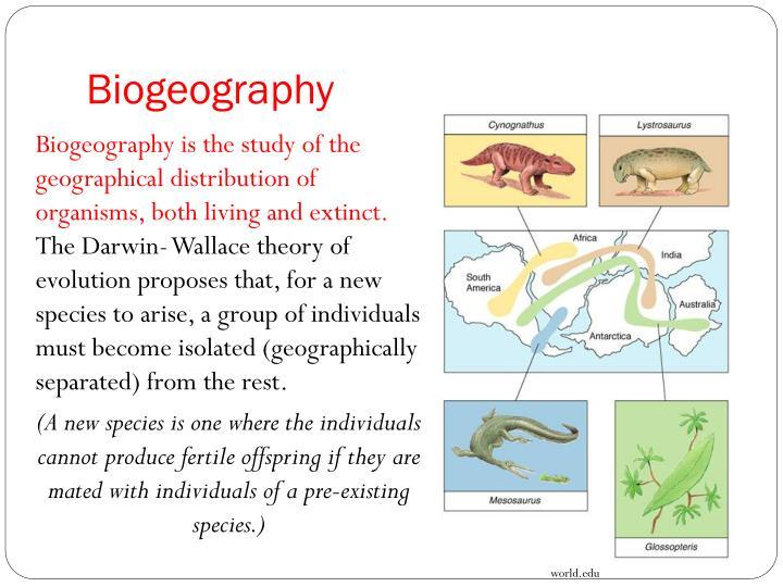 biology in focus hsc pdf