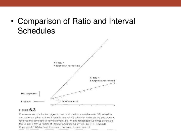 Comparison of Ratio and Interval Schedules