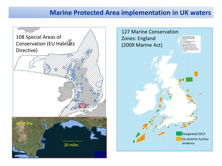 marine protected area What is a marine protected area the term marine protected areas include marine reserves, fully protected marine areas, no-take zones, marine sanctuaries, ocean sanctuaries, marine parks, locally managed marine areas, to name a few many of these have quite different levels of protection, and the range of activiti.