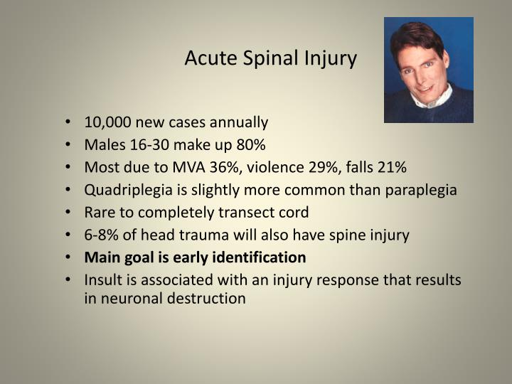 Acute Spinal Injury