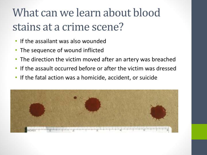 identification of bloodstain patterns Bloodstain patterns: identification, interpretation and application combines material from blood dynamics (2001) and bloodstain pattern evidence (2007) with updated case work and scientific advances from medical and hard sciences the text expands coverage of such areas as arterial damage pattern identification, staging of crime scenes, legal.