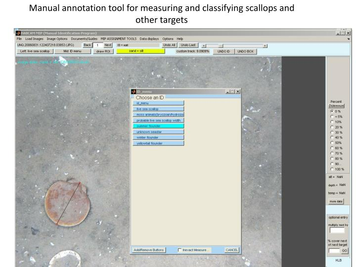 Manual annotation tool for measuring and classifying scallops and other targets