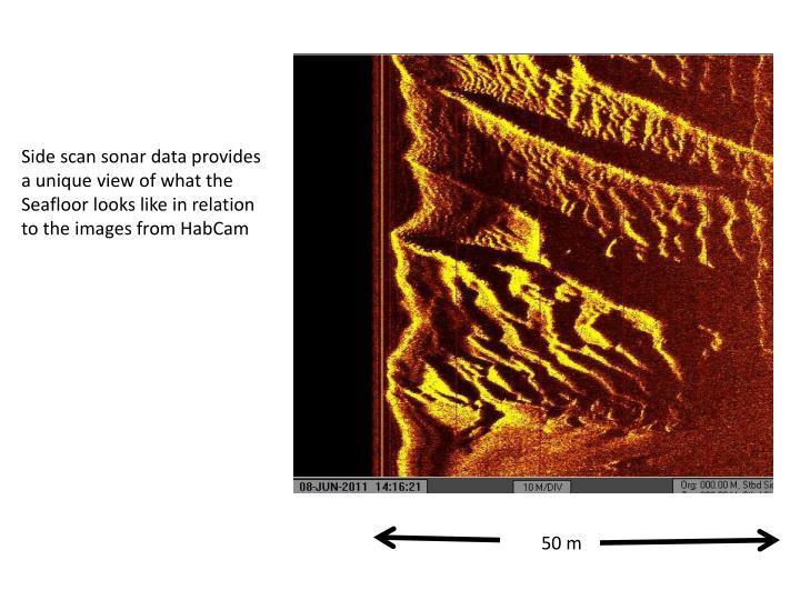 Side scan sonar data provides
