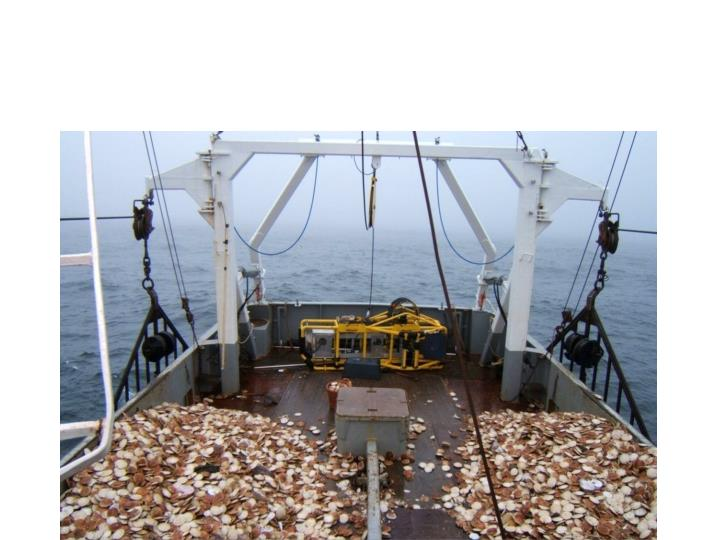 HabCam (towed underwater camera system):
