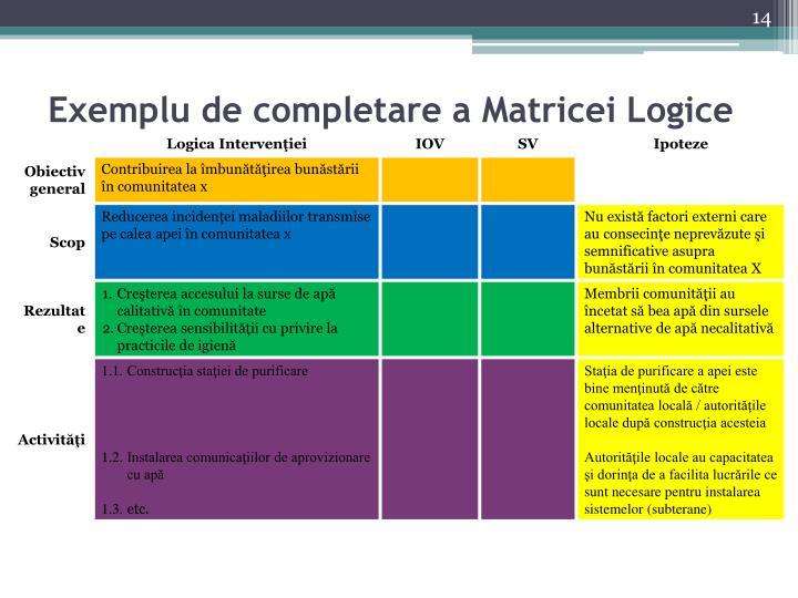 Exemplu de completare a Matricei Logice
