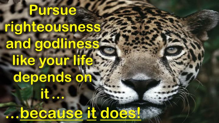 Pursue righteousness and godliness like your life