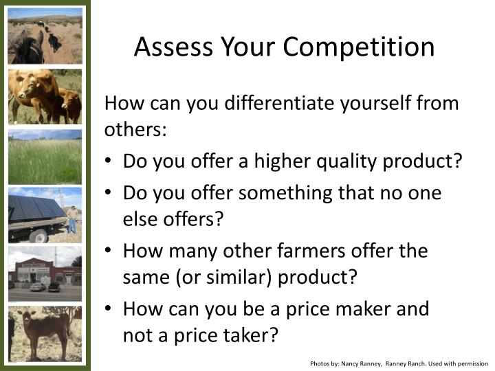 Assess Your Competition