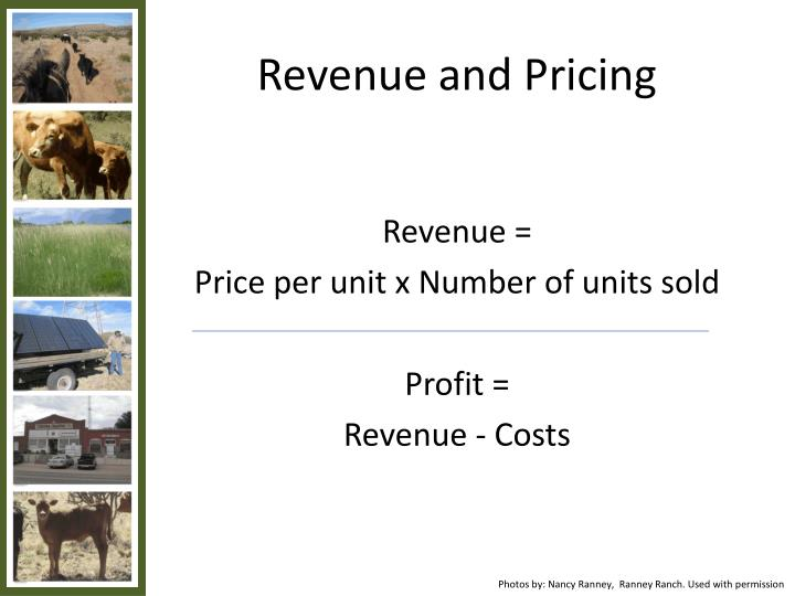 Revenue and pricing