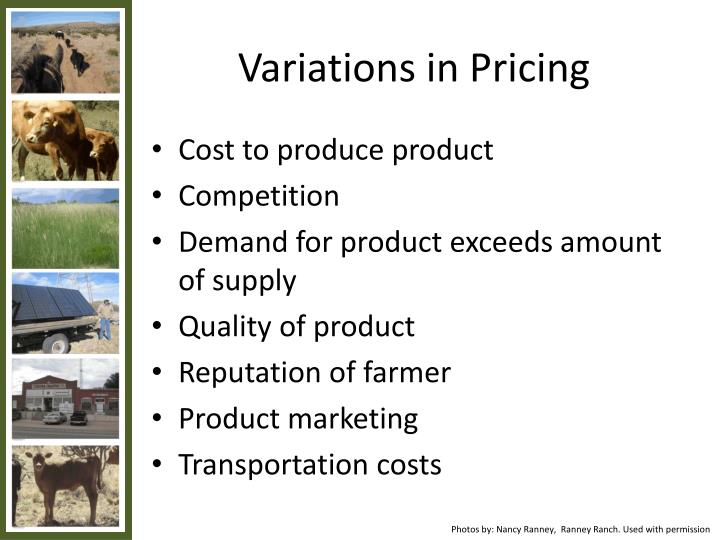 Variations in Pricing
