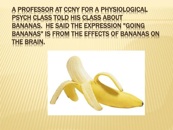 "A professor at CCNY for a physiological psych class told his class about bananas.  He said the expression ""going bananas"" is from the effects of bananas on the brain."