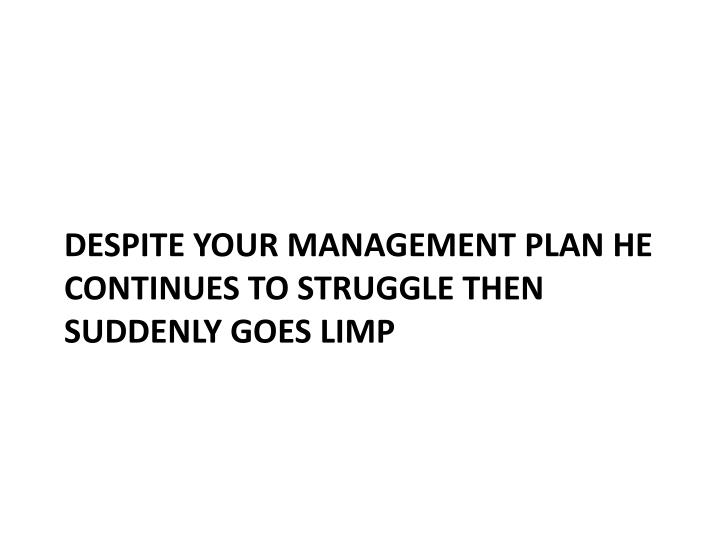 despite your management plan he continues to struggle then suddenly goes limp