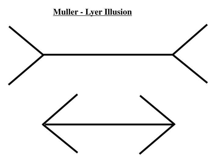 muller lyer illusion Free essay: the impact of global and local processing on the perceived adjustment error in the muller-lyer illusion a test of day's (1989) conflicting.