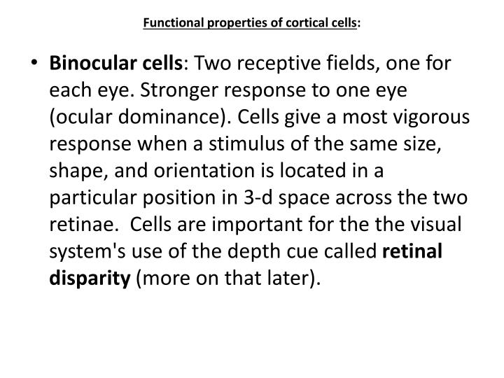 Functional properties of cortical cells