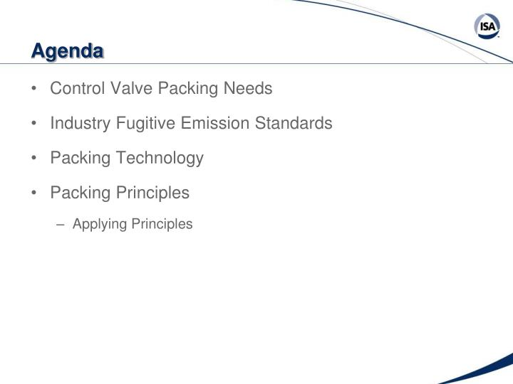 Control Valve Packing Needs