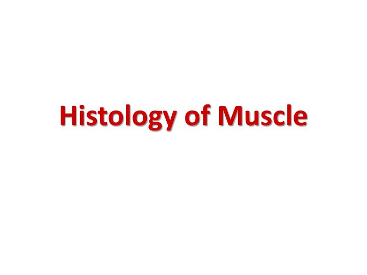histology of muscle n.
