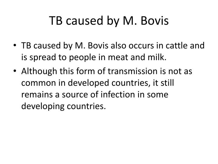 TB caused by M.