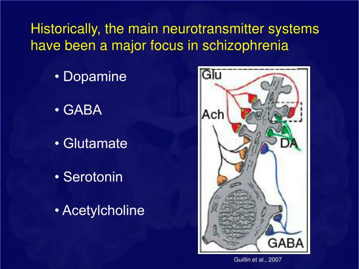 Historically, the main neurotransmitter systems have been a major focus in schizophrenia