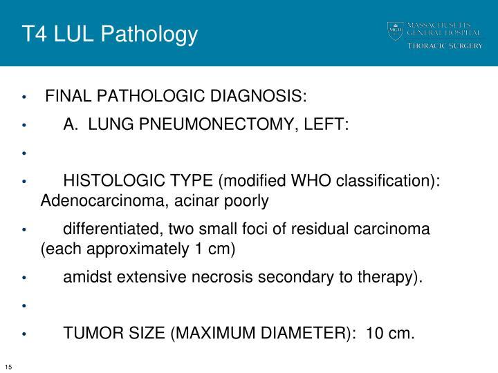 T4 LUL Pathology