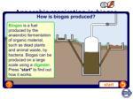 anaerobic respiration in biogas