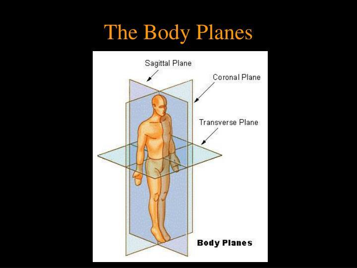 The Body Planes