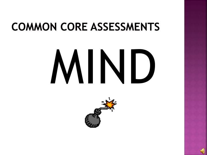 Common Core Assessments