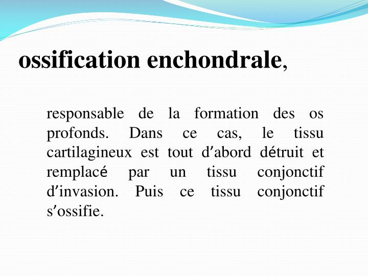 ossification enchondrale