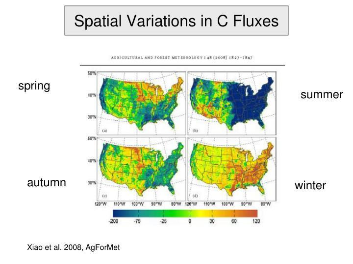Spatial Variations in C Fluxes