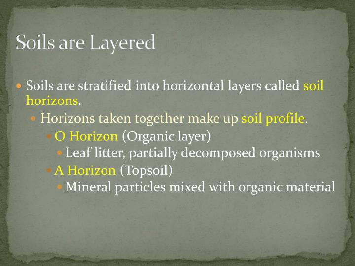 Soils are Layered